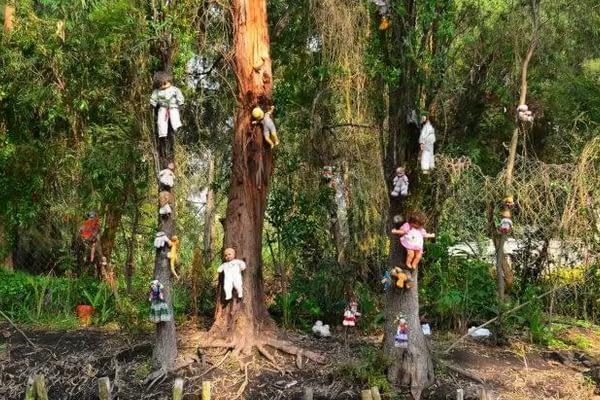 Pulau Boneka di Mexico